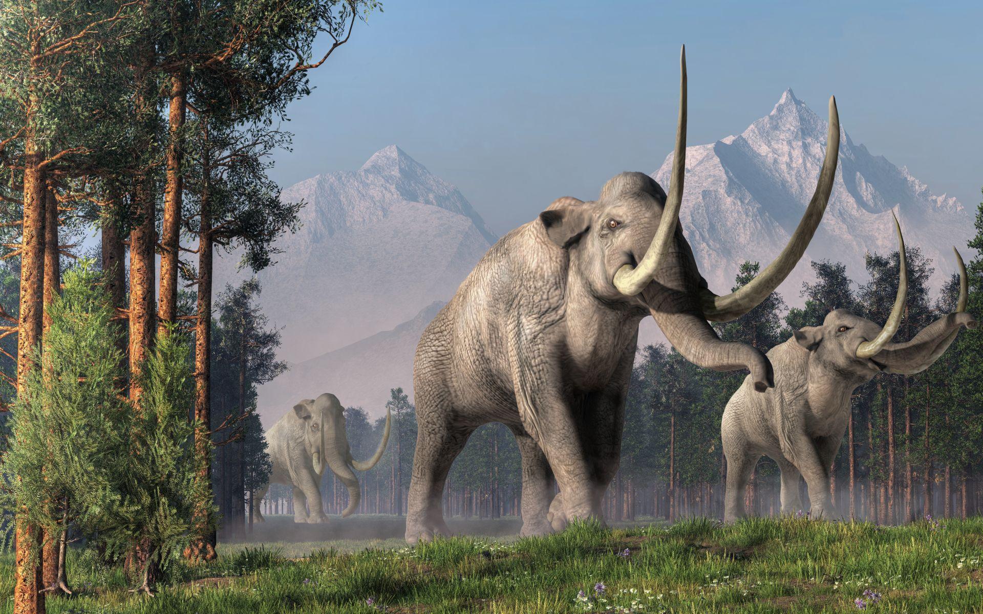 mamut-cisarsky-Mammuthus-columbi