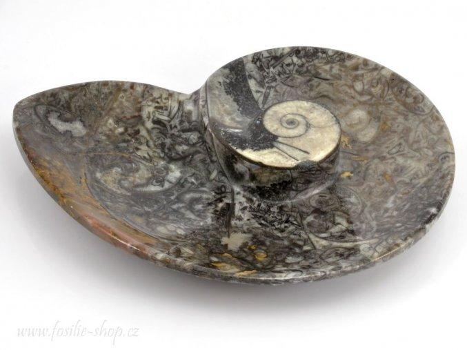 Miska zkameněliny goniatit (36)