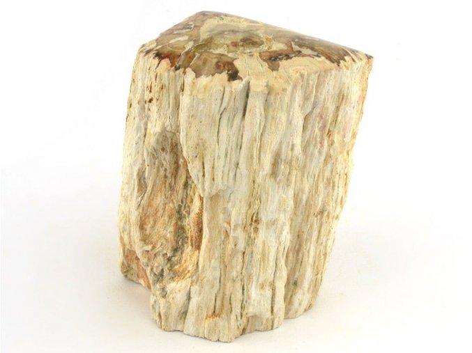 zkamenele drevo 34