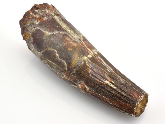 spinosaurus 13
