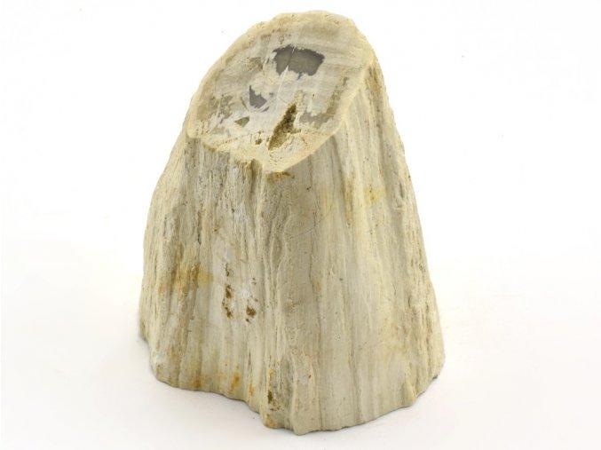 zkamenele drevo 36