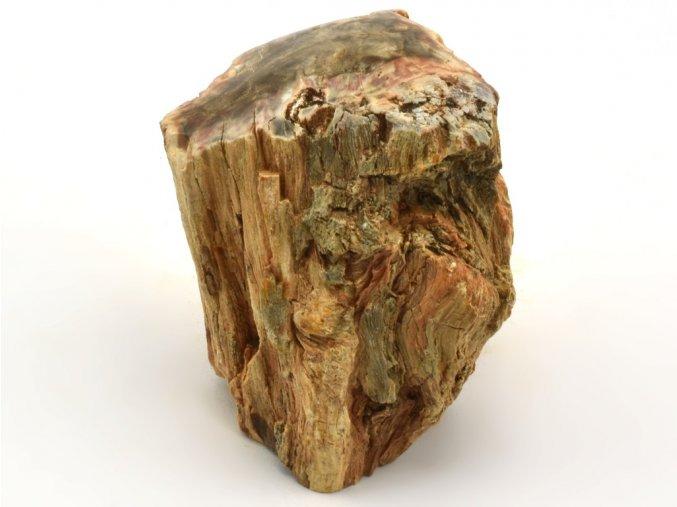 zkamenele drevo 47