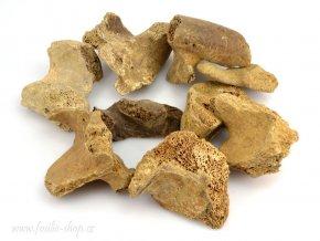 Ursus spelaeus 4-6cm (1ks)