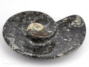 Miska zkameněliny goniatit (35)