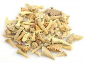 zraloci zuby mix