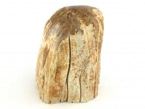 zkamenele drevo 22