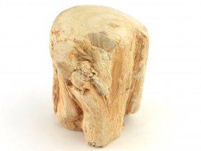 zkamenele drevo 30