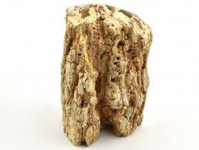 zkamenele drevo 3