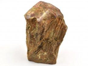 zkamenele drevo 4