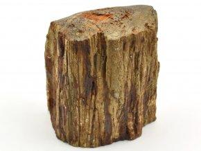 zkamenele drevo 27