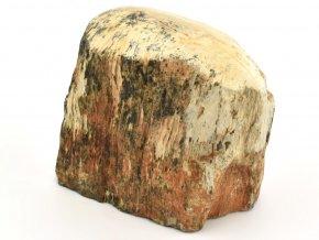 zkamenele drevo 28