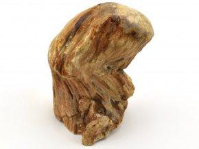 zkamenele drevo 29