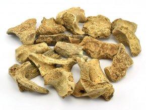 ursus speleus 3cm