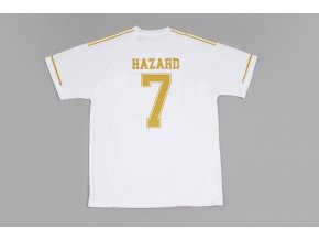 Real Hazard