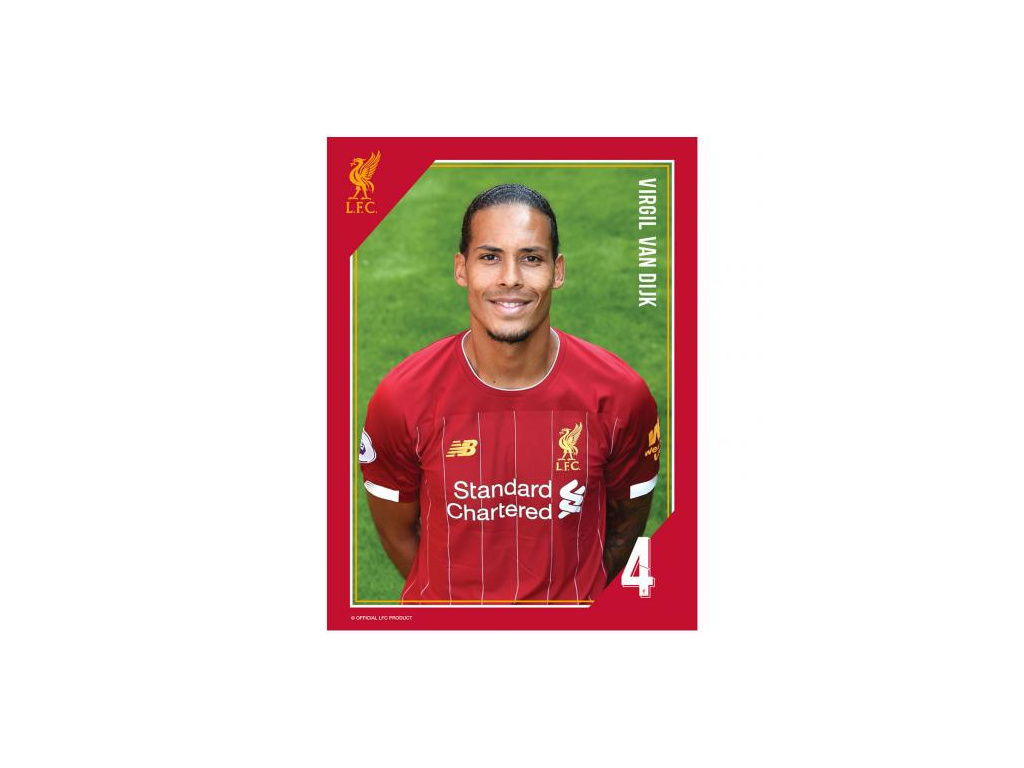 Tištěná fotografie Liverpool 15/20cm Van Dijk