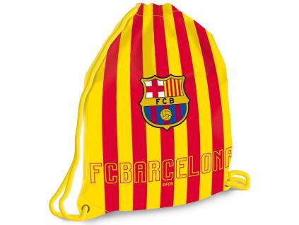 Vak FC Barcelona cat 17 maxi 37x46 cm