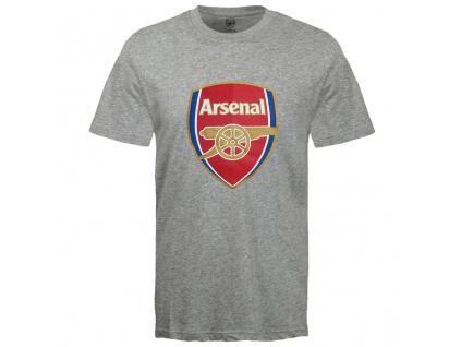 Dětské tričko Arsenal FC core šedé