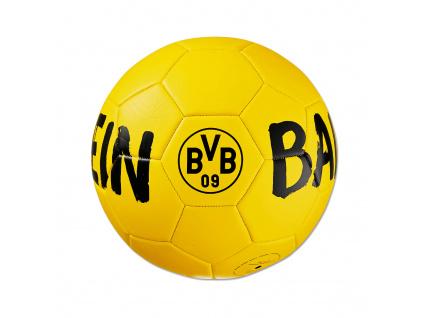 fotbalovy mic borussia dortmund