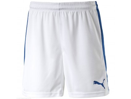Šortky Puma Pitch Shorts
