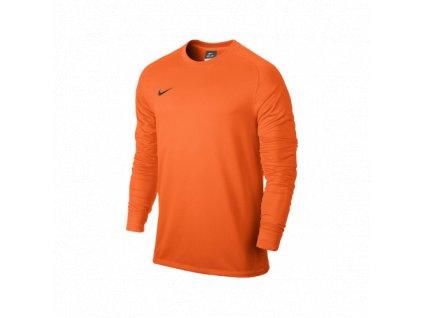 Dětský brankářský dres Nike Park II (6)
