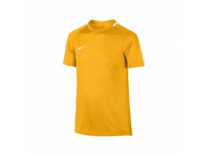 Dětské tréninkové triko Nike Dry Academy
