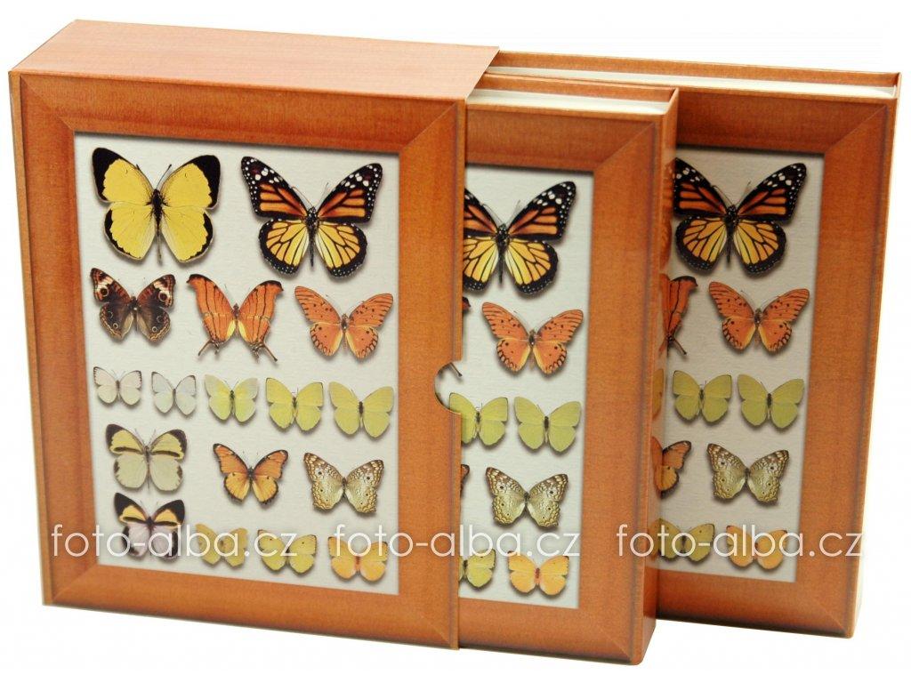 foto-album motýl