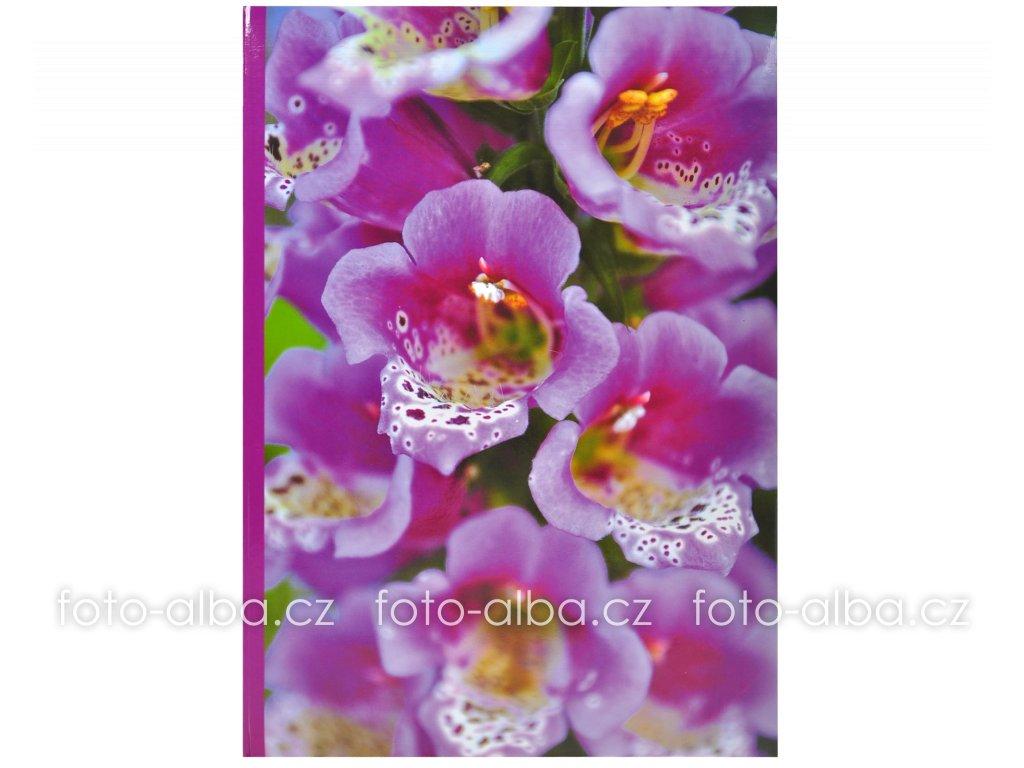 foto-album digitalis