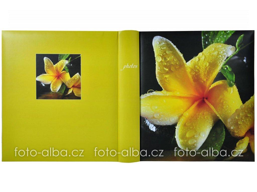 foto-album kalachuchi