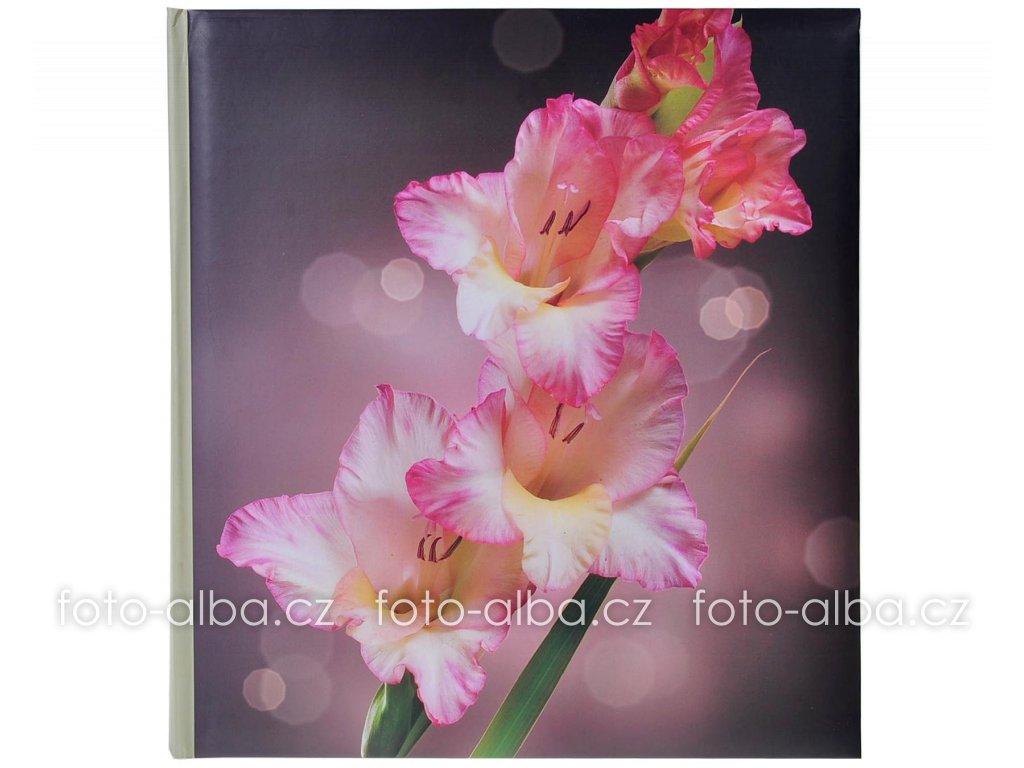 foto-album gladiol