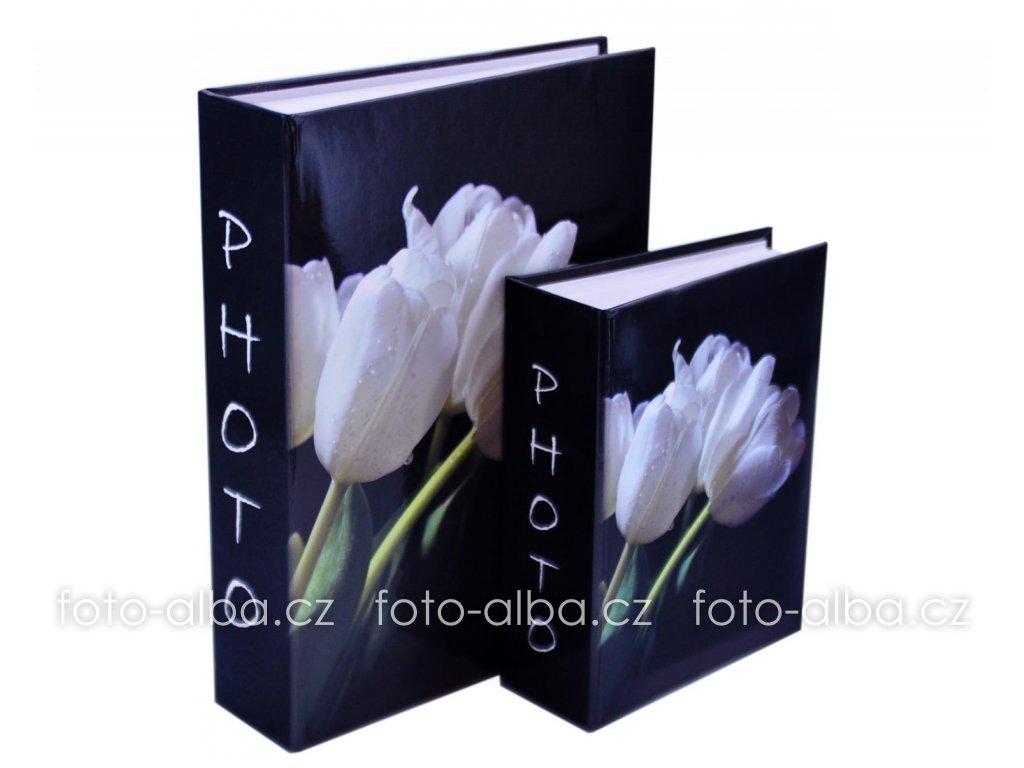 fotoalbum tulipány detail