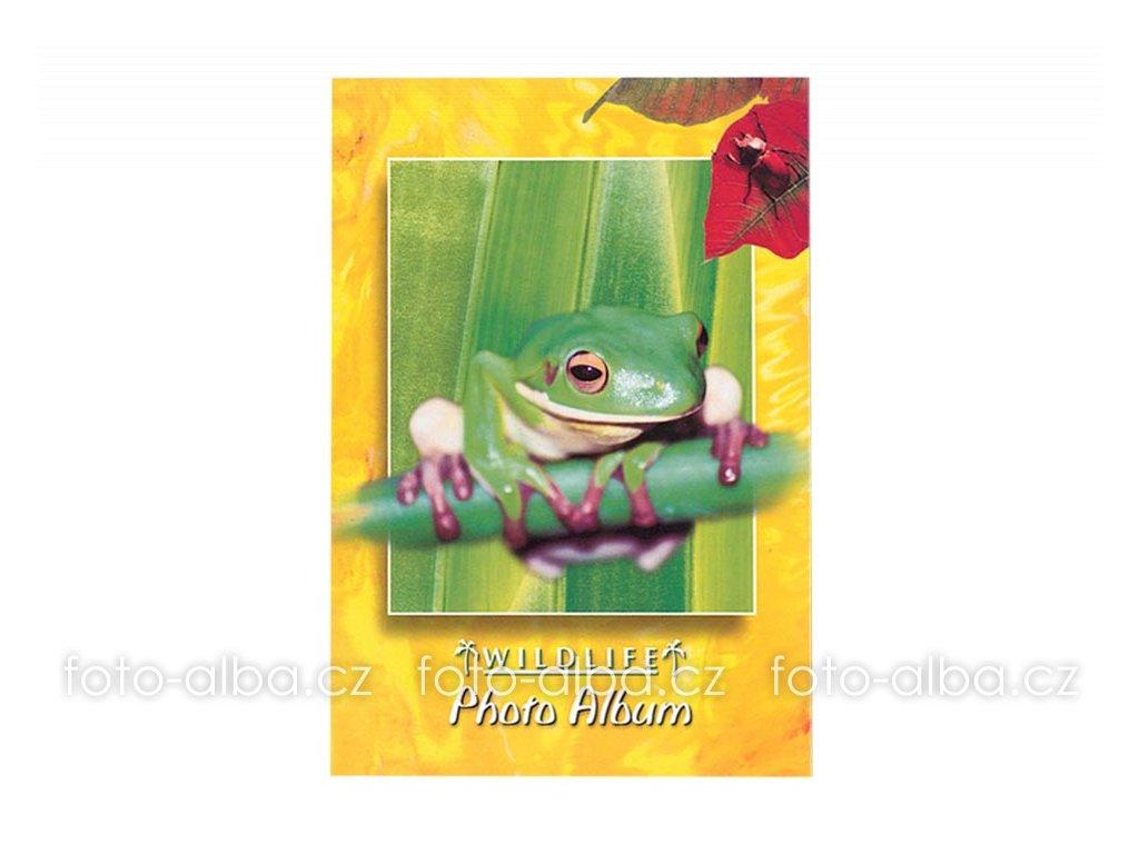 foto-album sešitek žába