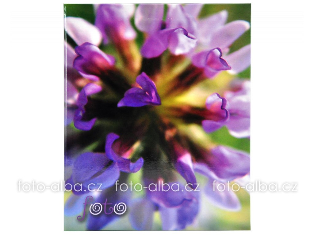 fotoalbum deep purple detail