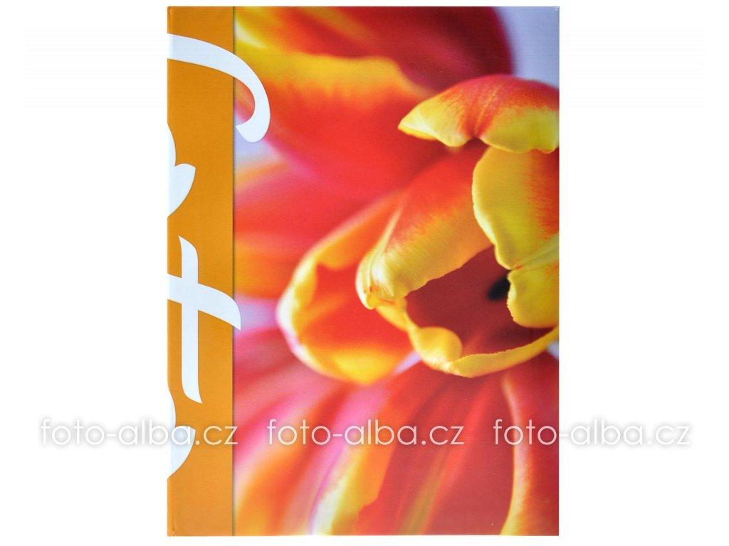 foto-album tulipán