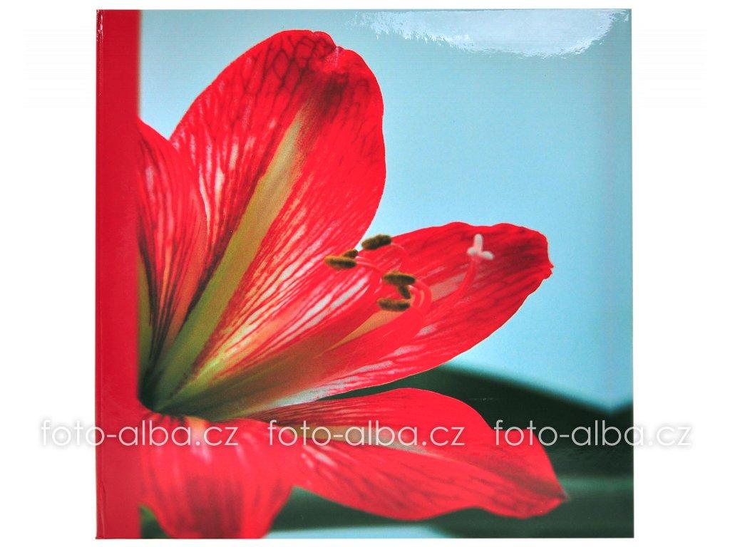 foto-album clivia