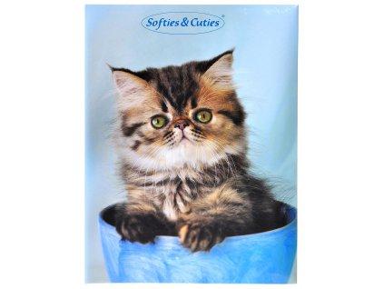 foto-album kotě
