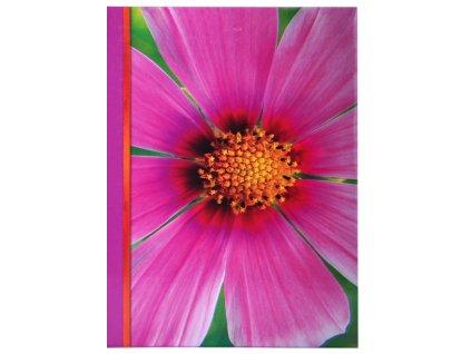 fotoalbum violeta detail