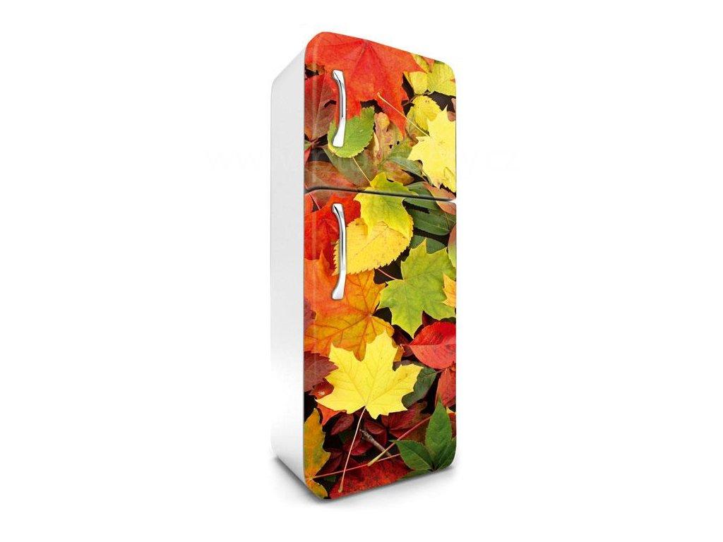 Samolepící fototapeta na lednici - Podzimní listí, 65x180cm, 025