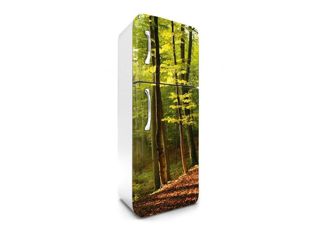Samolepící fototapeta na lednici - Podzimní les, 65x180cm, 028