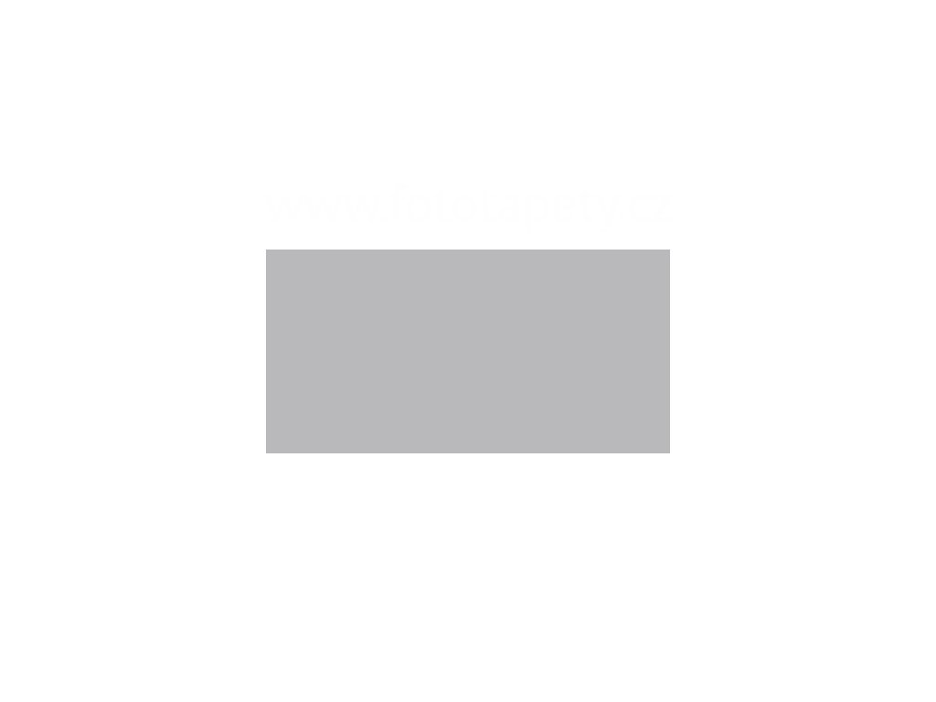 Samolepící tapeta jednobarevná matná - Světle šedá