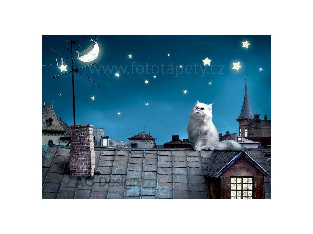 Jednodílná vliesová fototapeta Kočka na střeše FTN m 2606, rozměr 160x110cm