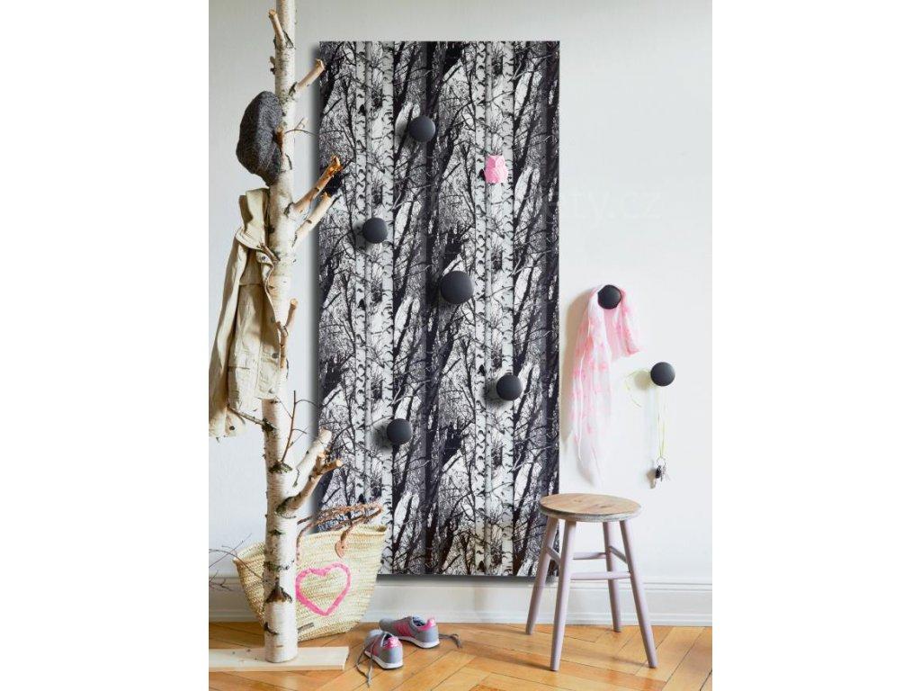 Samolepící tapeta d-c-fix Decor, vzor Wood - Břízy