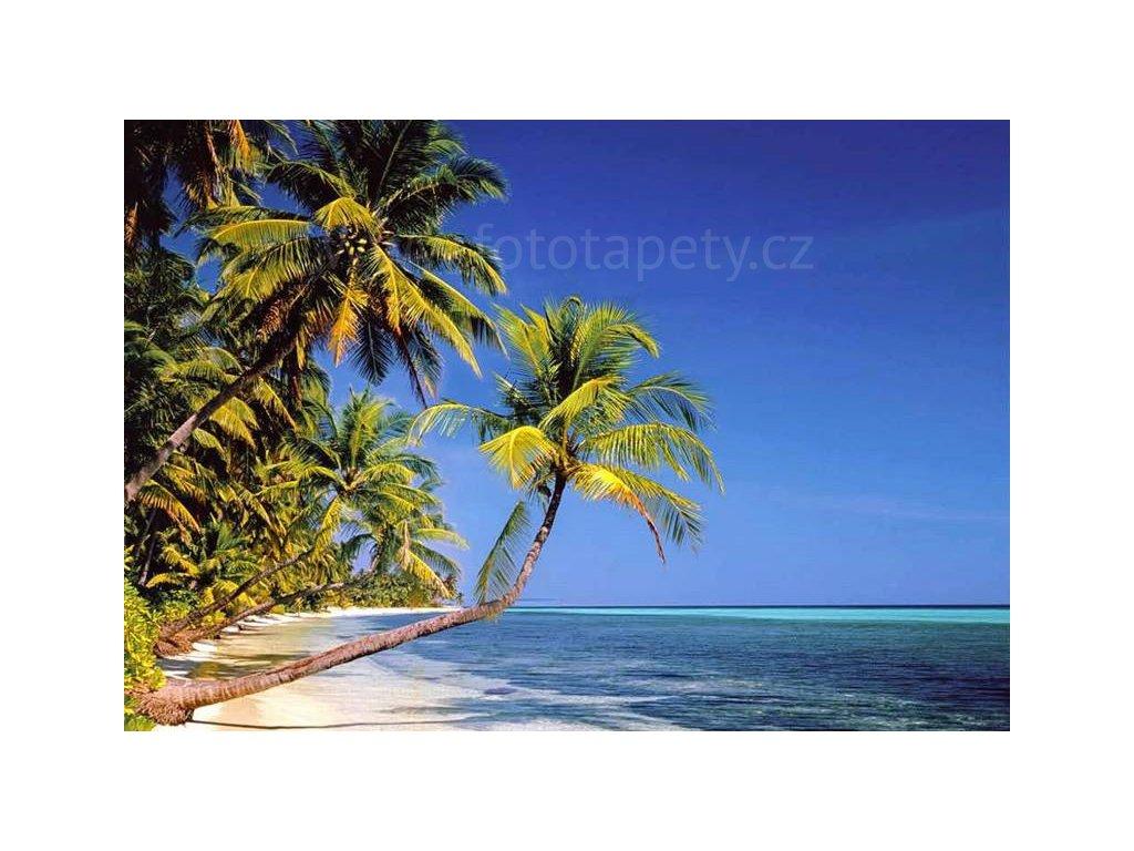 Osmidílná fototapeta Beach, 366x254 cm, skladem poslední 2 ks