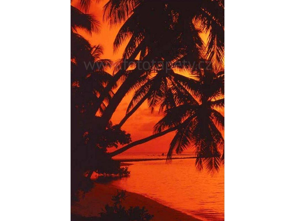 Čtyřdílná fototapeta Beach in sunset, 183x254 cm, skladem poslední 2ks