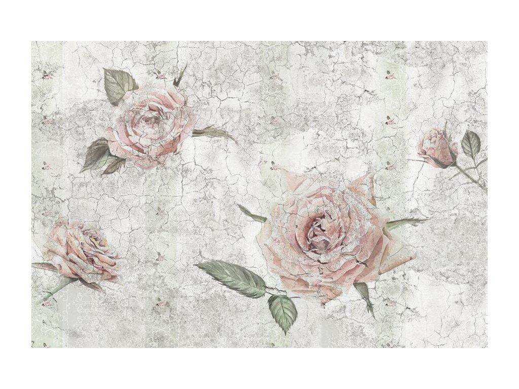 Čtyřdílná vliesová fototapeta Růže, 368x248cm, XXL4-049