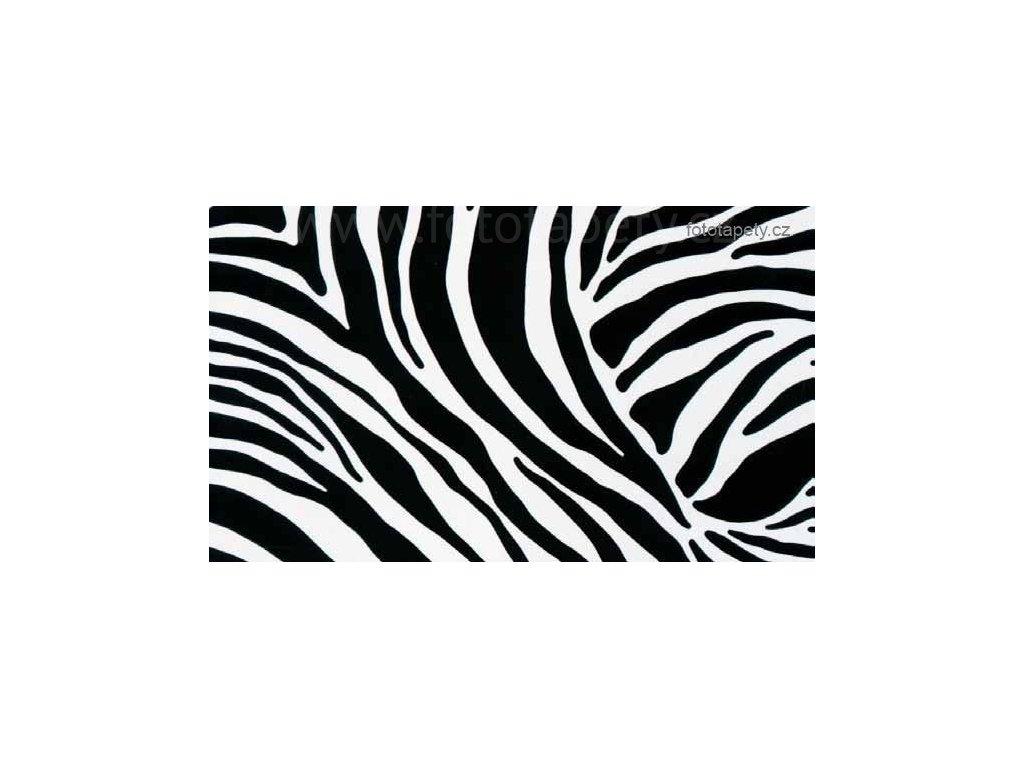 Samolepící fólie Decor, Zebra