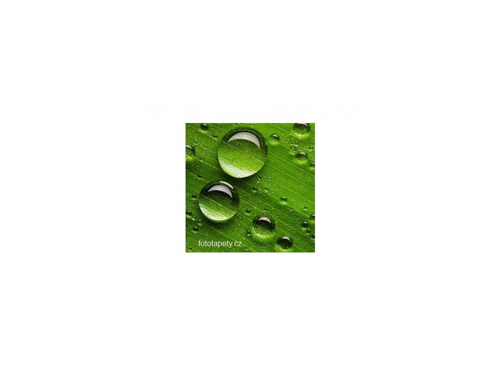 Samolepící velkoplošná nálepka - Tráva, 100x100cm
