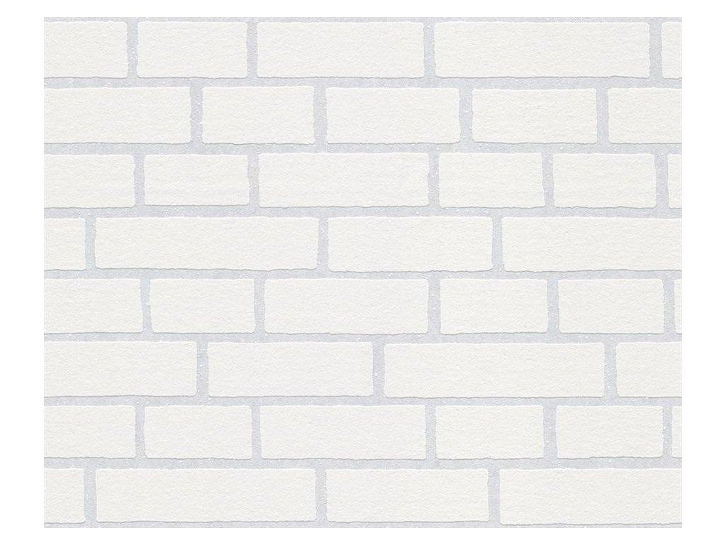 Přetíratelná vliesová tapeta na zeď Meistervlies 2020, 2453-11