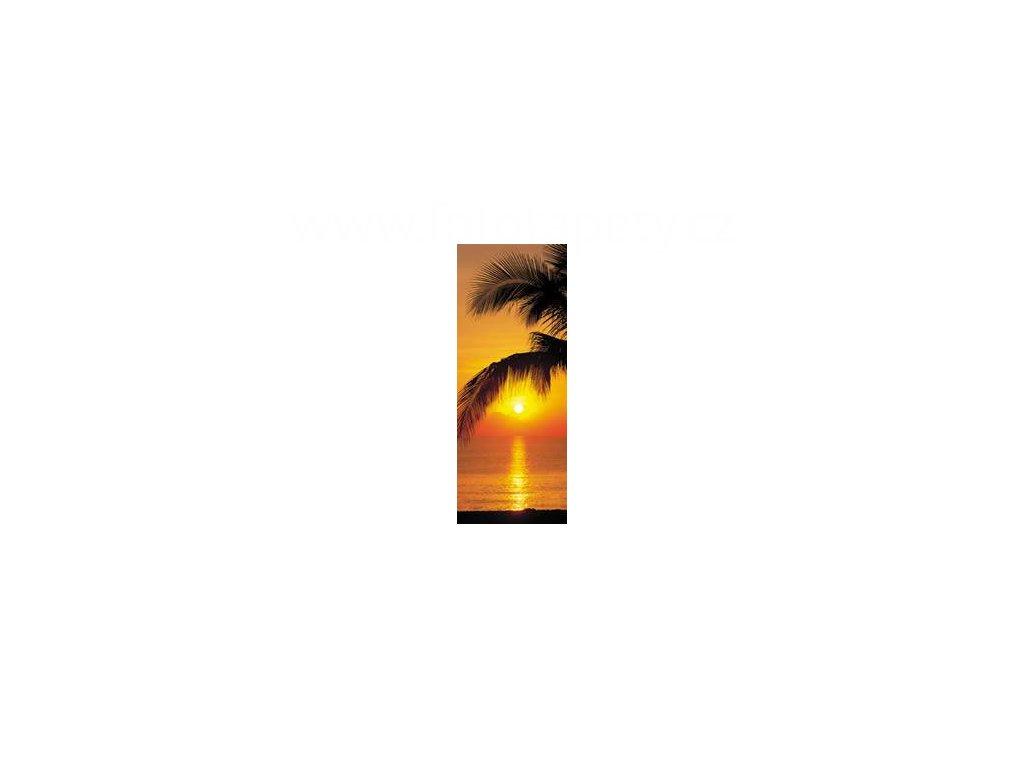 Dvoudílná obrazová tapeta Palmy v západu slunce, 97 x 220cm,2D 2-1255