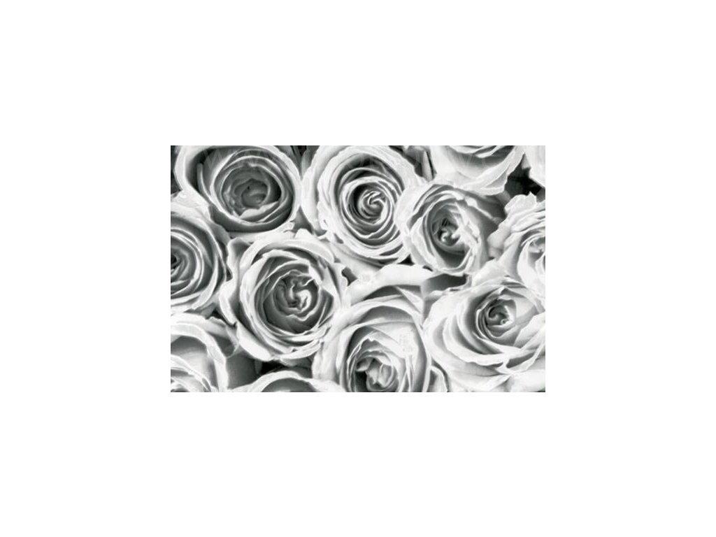 Samolepící fólie imitace Decor, Bílé a šedé růže