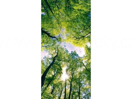 Samolepící fototapeta na podlahu - Klenby stromů, 85x170cm, 001